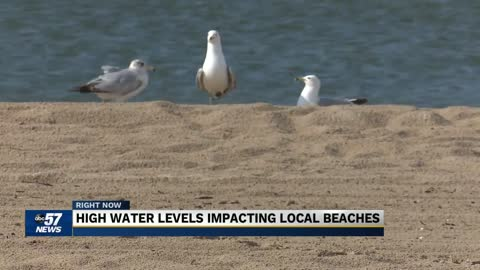 Beaches get smaller as Lake Michigan water levels continue to rise