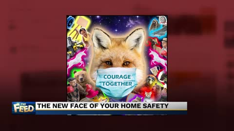 Your new home safety mascot