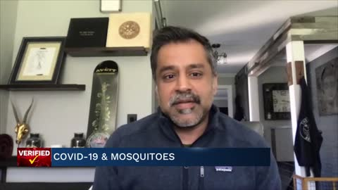 Medical Minute: COVID-19 and Mosquitoes