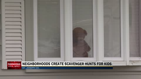 Osceola neighbors are going bear hunting to cope with quarantine