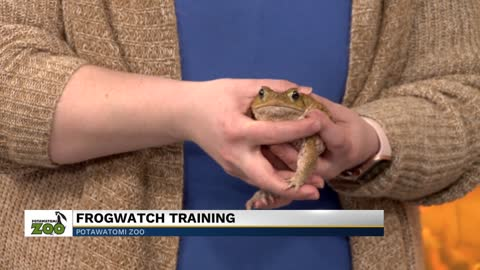 Potawatomi Zoo to host FrogWatch training