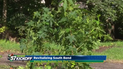 Partnership between Notre Dame, South Bend plants trees in vacant city lots