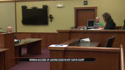 Woman accused of leaving dogs in a hot car appears in court