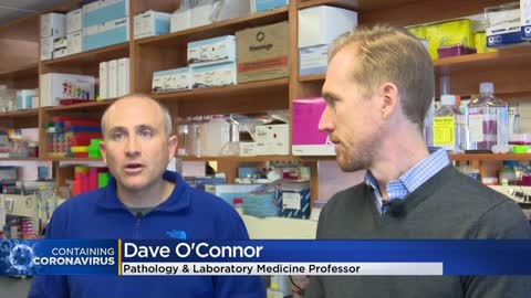 UW-Madison scientists join global effort to study coronavirus