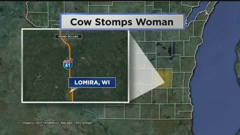 Cow Trampled Lomira Farmer, Non-Life Threatening Injuries