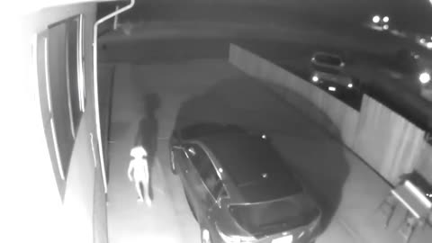 Strange surveillance video goes viral