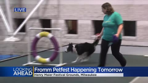 Fromm Petfest returns to Milwaukee Saturday