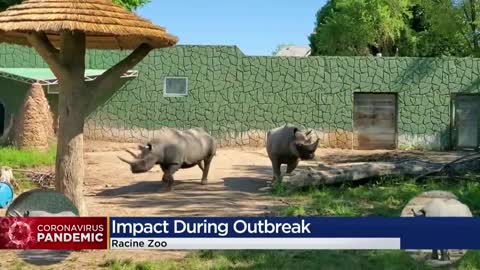 Racine Zoo looks to connect with community through social media...