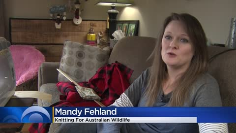 Hales Corners woman knits for animals affected by Australia's wildfires