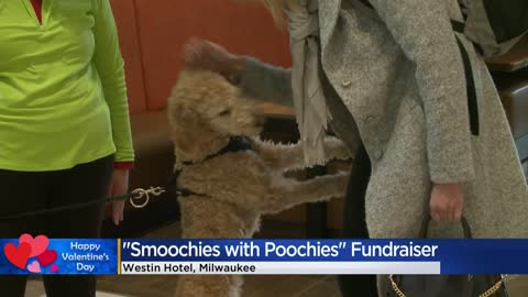 Animal lovers celebrate Valentine's Day at 'Smoochies with Poochies' fundraiser