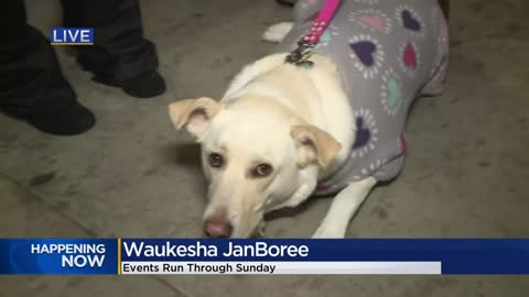 Waukesha JanBoree: Here's what you won't want to miss in the final weekend