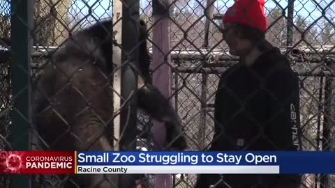 Privately-owned Franksville zoo asks for donations: 'All of our income is gone'