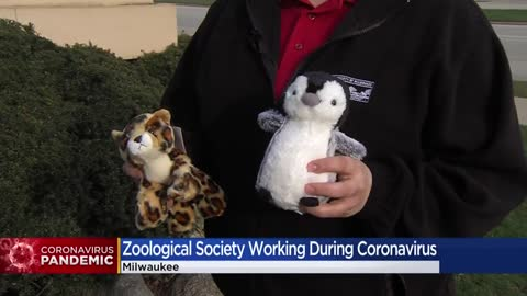 The Zoological Society of Milwaukee keeps the interest of animals...