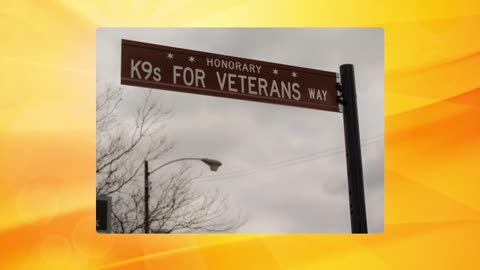 Catching Up with K9 for Veterans